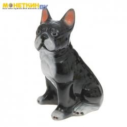 Копилка «Собака Французский Бульдог» большой глянец черный
