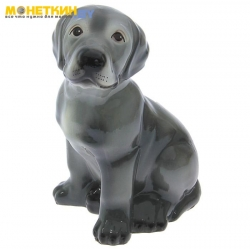 Копилка «Собака Лабрадор» глянец серый