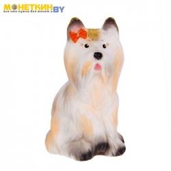 Копилка «Собака Йорк» белый