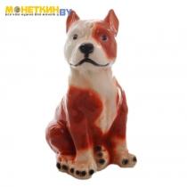 Копилка «Собака Питбуль» большой рыжый с белым глянец