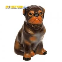 Копилка «Собака Мопс» глянец светло – коричневый