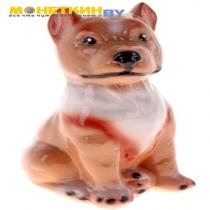 Копилка «Собака Питбуль»
