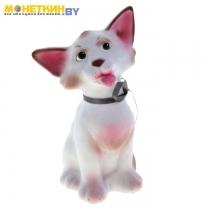 Копилка «Кошка Чистюля» белый