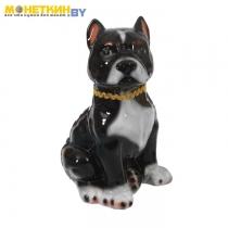 Копилка «Собака Питбуль» большой черный глянец