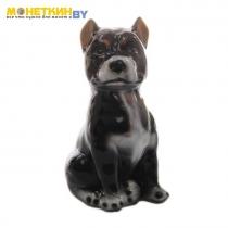 Копилка «Собака Питбуль» малый глянец черный