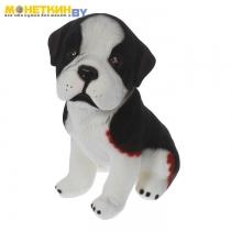 Копилка «Собака Сенбернар» черный с белым