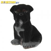 Копилка «Собака Бульдог» большой черный