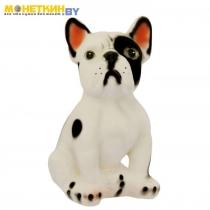 Копилка «Собака Французский Бульдог» малый черно – белый