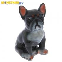 Копилка «Собака Французский Бульдог» малый глянец черный