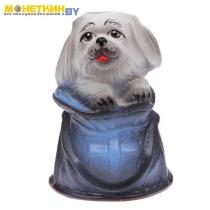 Копилка «Собачка в рюкзаке»