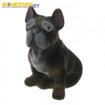 Копилка «Собака Французский бульдог» черный