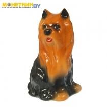 Копилка «Собака Болонка» глянец