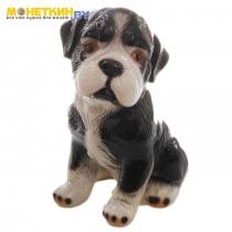 Копилка «Собака Сенбернар» глянец черный
