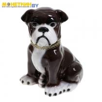 Копилка «Собака Бульдог» коричневый